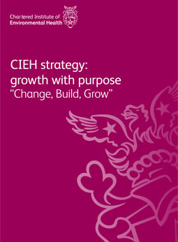 CIEH strategy cover